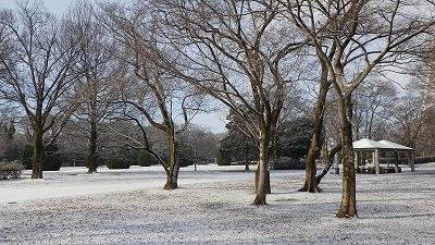 210110雪の園内 (6).jpg