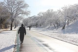 210130雪サイクリングロード (14).jpg