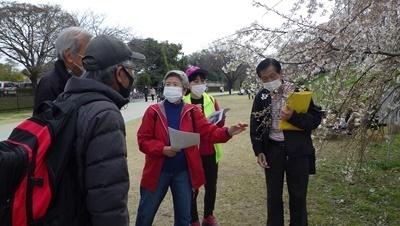 210327国指定名勝及び天然記念物「木曽川堤(サクラ)」守る講座 (13).JPG