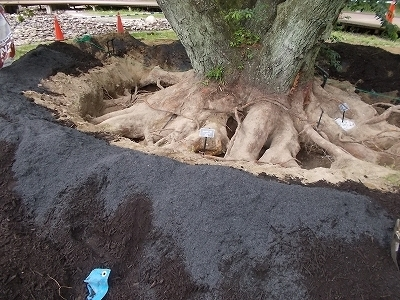 �B堆肥、もみ殻くん炭.jpg