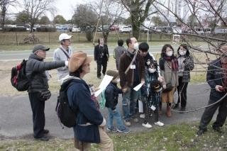 木曽川堤の桜を10倍楽しむ講座.jpg