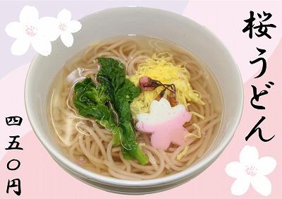 桜うどん.jpg