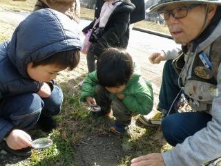 森のようちえん (3).jpg
