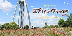 bana_138_spring[1].jpg
