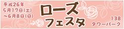 banner_138_rose.jpg