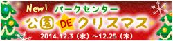 banner_aqua_christmas.jpg