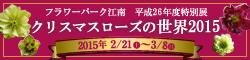 banner_konan_2015christmasrose.jpg