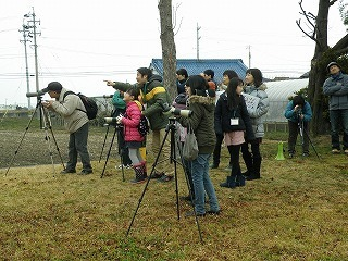 s-0222渡り鳥 (6).jpg