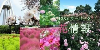 title_138_kisetu[1].jpg